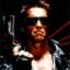 Terminator's Avatar
