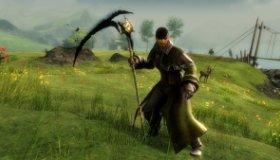 Guild Wars 2: Leveling Tips