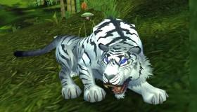 World of Warcraft: Όλες οι πληροφορίες για τα Hunter Pets