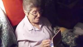 87χρονη γιαγιά συμπληρώνει 3.580 ώρες στο Animal Crossing: New Leaf