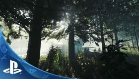 Το The Forest στο PS4