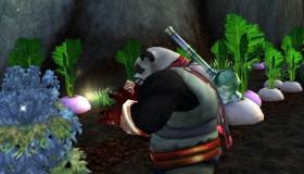 World of Warcraft: Pacifist Pandaren έφτασε το level 120 μαζεύοντας λουλούδια