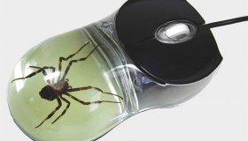 Mouse με αράχνες, σκορπιούς, καβούρια και άλλα αρθρόποδα